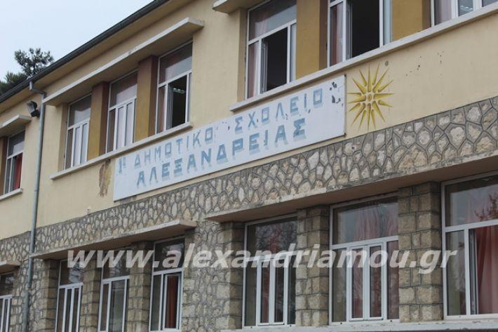 alexandriamou.gr_1o5otsiknopemptii20017