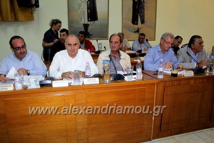 alexandriamou.gr_1odimsimboulio2019IMG_9377