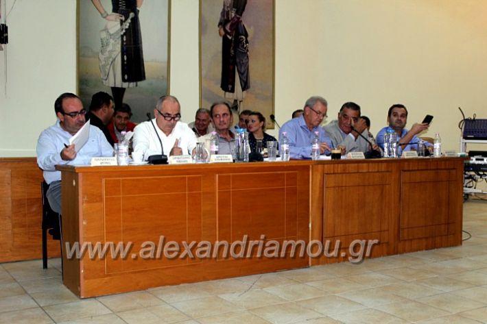 alexandriamou.gr_1odimsimboulio2019IMG_9382
