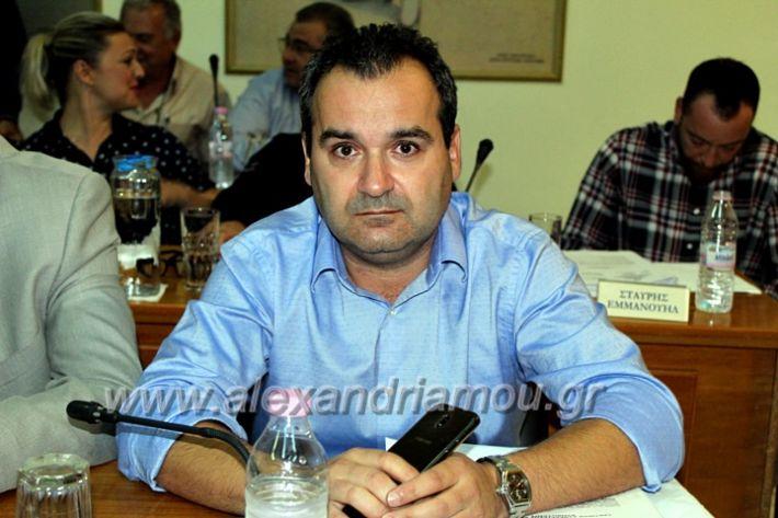 alexandriamou.gr_1odimsimboulio2019IMG_9383