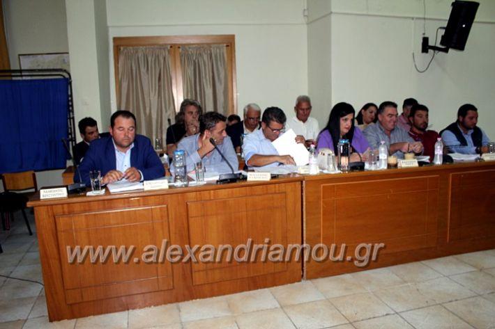 alexandriamou.gr_1odimsimboulio2019IMG_9385