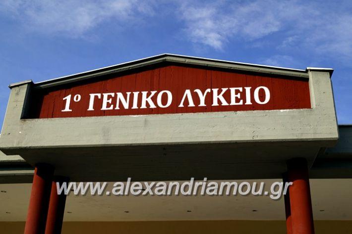 alexandriamou.gr_1olukeioagiasmos2019_DSC8803