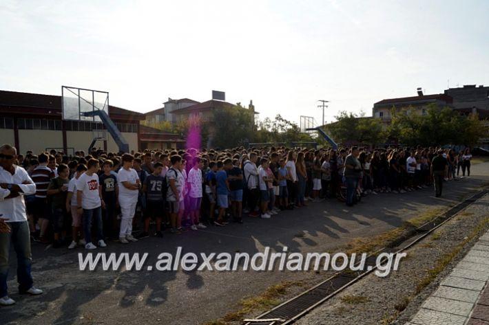 alexandriamou.gr_1olukeioagiasmos2019_DSC8804