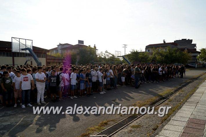 alexandriamou.gr_1olukeioagiasmos2019_DSC8805