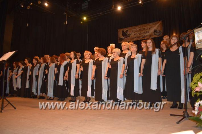 alexandriamou_23isinantisixorodion035