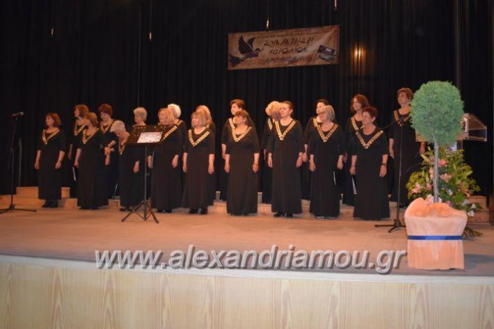 alexandriamou_23isinantisixorodion147
