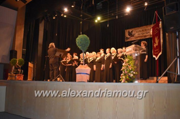 alexandriamou_23isinantisixorodion157