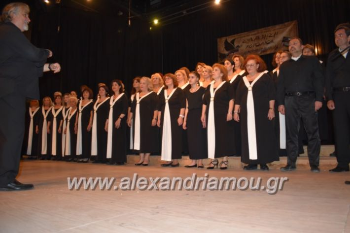 alexandriamou_23isinantisixorodion212