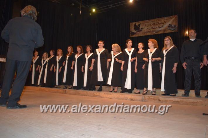 alexandriamou_23isinantisixorodion225