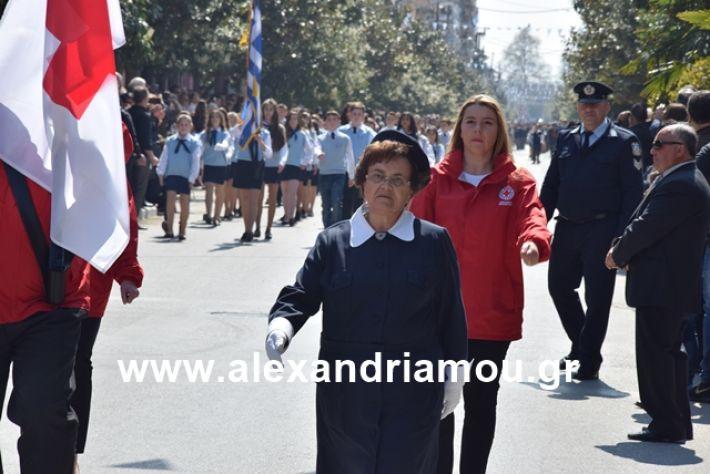alexandriamou.gr_25σχολια052