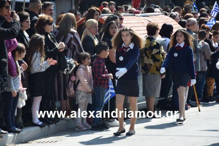 alexandriamou.gr_25σχολια105