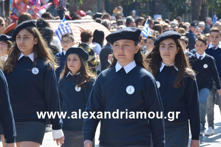 alexandriamou.gr_25σχολια137