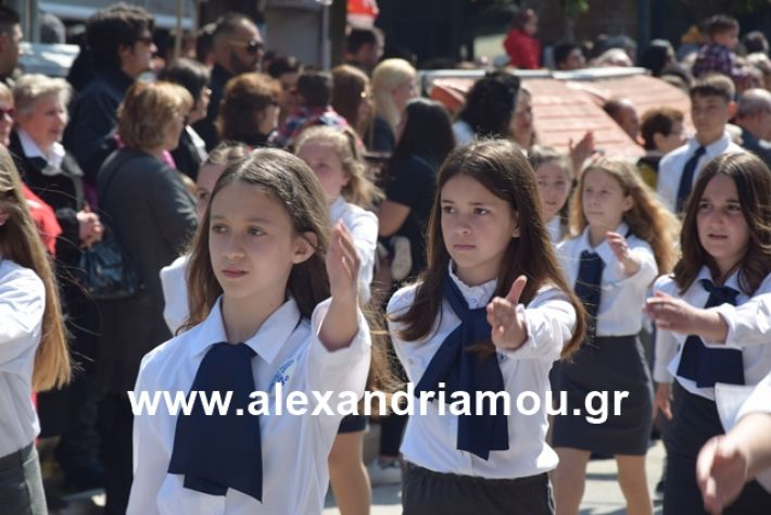 alexandriamou.gr_25σχολια216