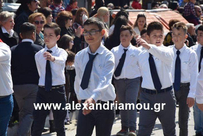 alexandriamou.gr_25σχολια222