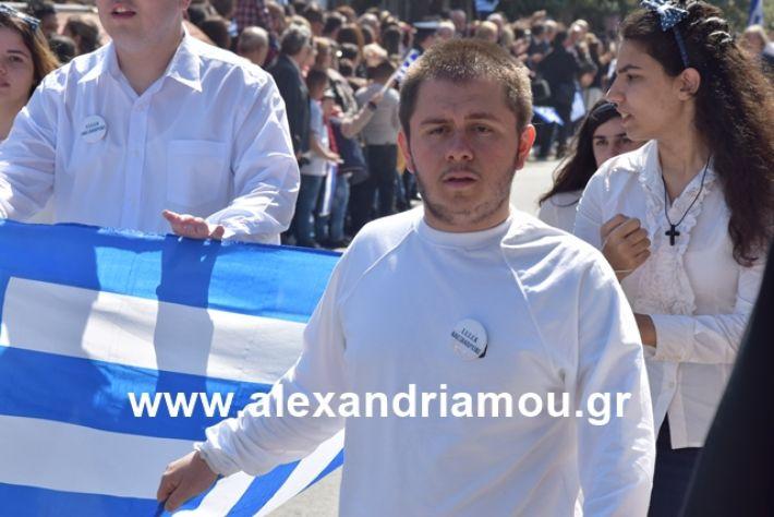 alexandriamou.gr_25σχολια245