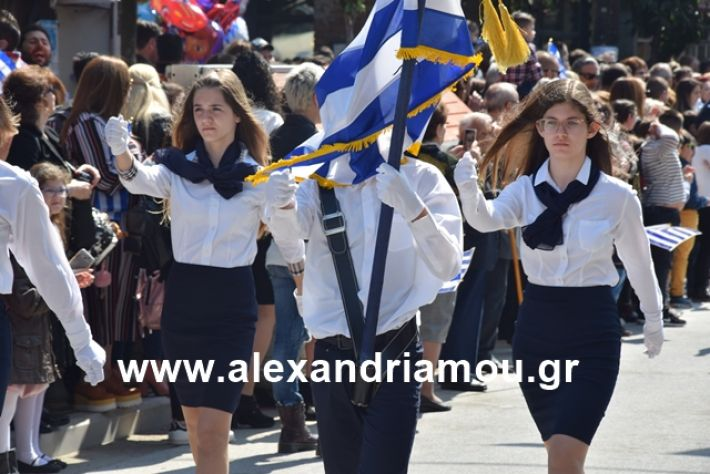 alexandriamou.gr_25σχολια260