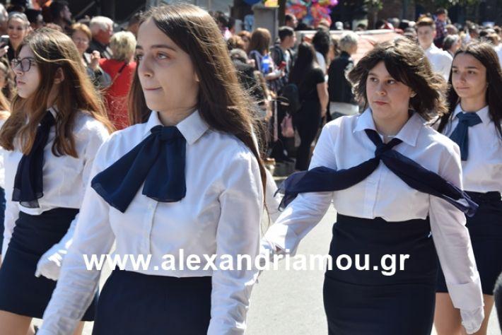 alexandriamou.gr_25σχολια279