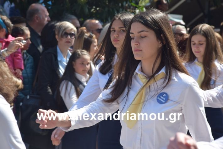 alexandriamou.gr_25σχολια316