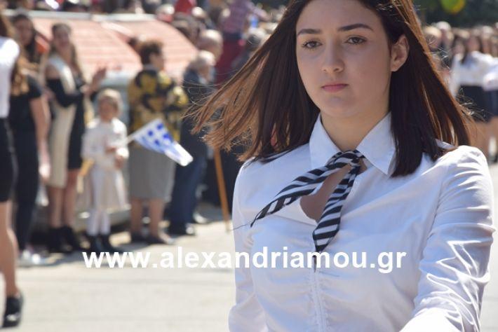 alexandriamou.gr_25σχολια335