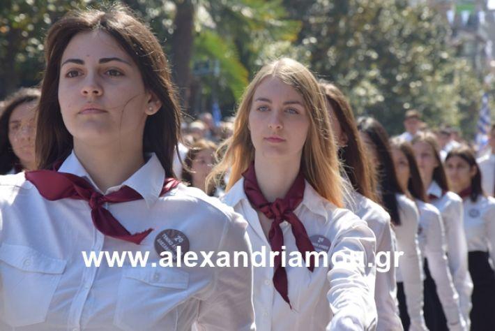 alexandriamou.gr_25σχολια393