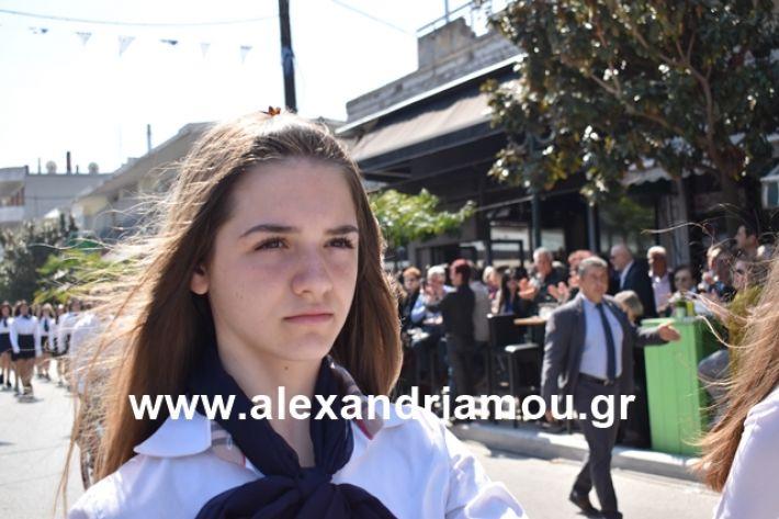 alexandriamou.gr_25sxoliaa097