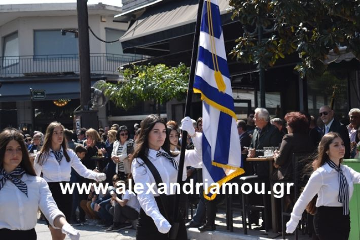 alexandriamou.gr_25sxoliaa118