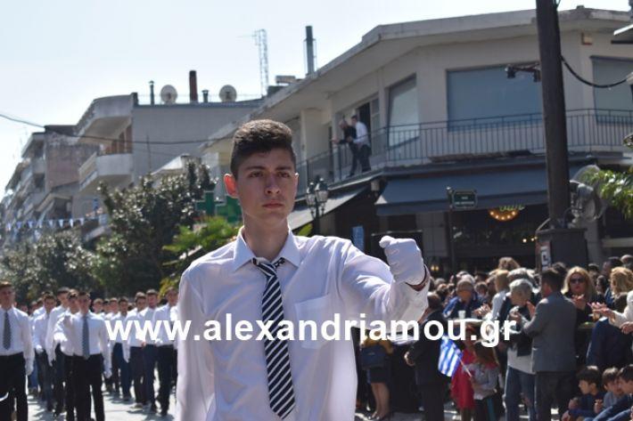 alexandriamou.gr_25sxoliaa127
