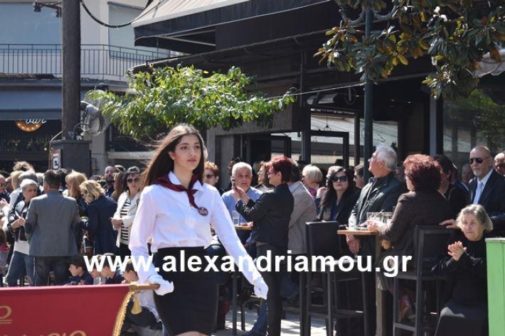 alexandriamou.gr_25sxoliaa132