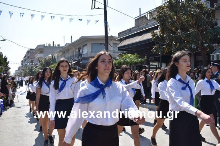 alexandriamou.gr_25sxoliaa149