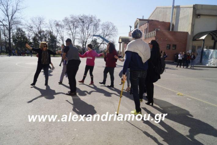 alexandriamou.2ogumnasiolikeiotsiknopempti2019048