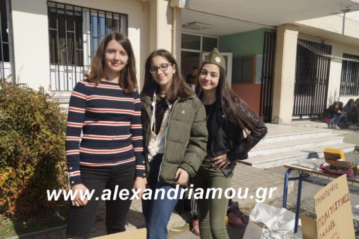 alexandriamou.2ogumnasiolikeiotsiknopempti2019049