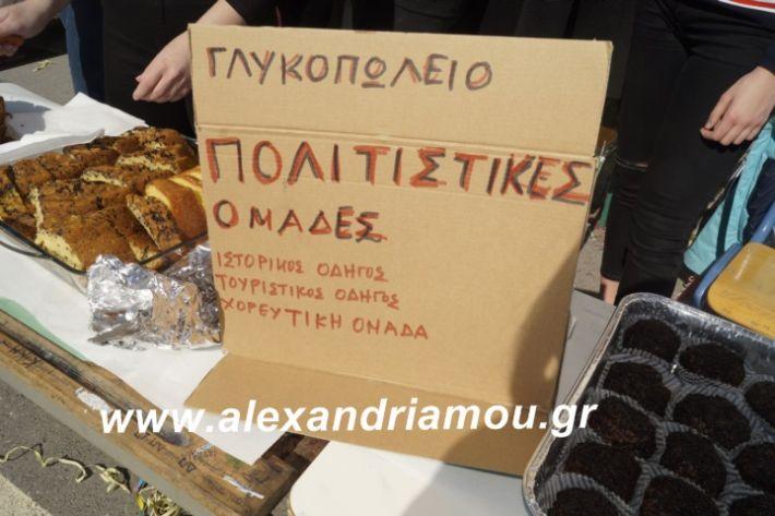 alexandriamou.2ogumnasiolikeiotsiknopempti2019085