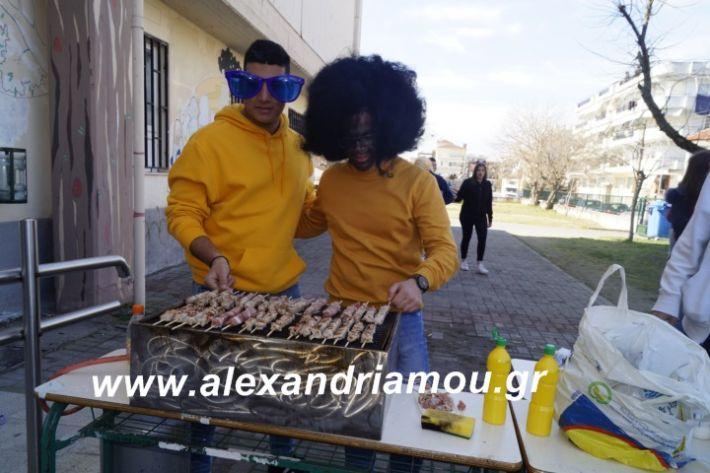 alexandriamou.2ogumnasiolikeiotsiknopempti2019109
