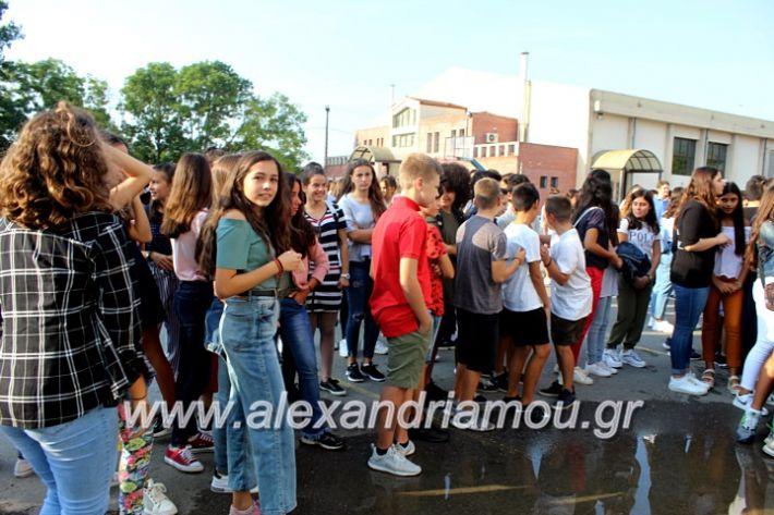 alexandriamou.gr_2olukeioagiasmos2019IMG_7435