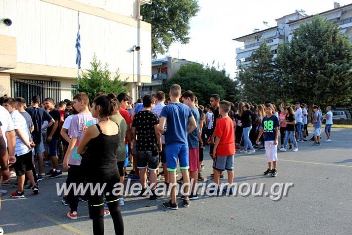 alexandriamou.gr_2olukeioagiasmos2019IMG_7448