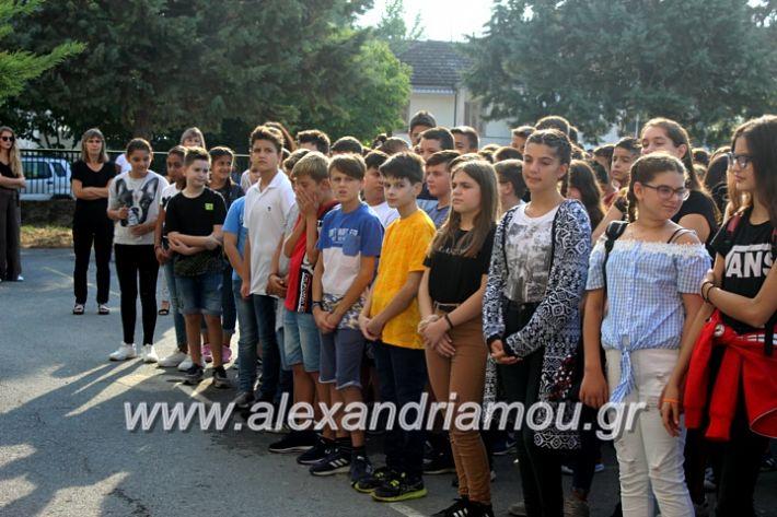 alexandriamou.gr_2olukeioagiasmos2019IMG_7461