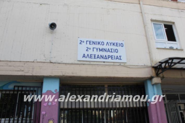alexandriamou.gr_2likeioagiasmos2020001
