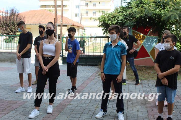 alexandriamou.gr_2likeioagiasmos2020007