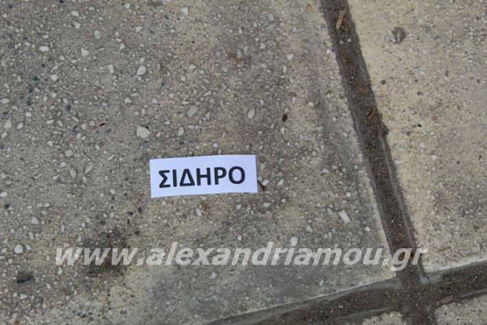 alexandriamou.gr_3odimanaiklosi20055