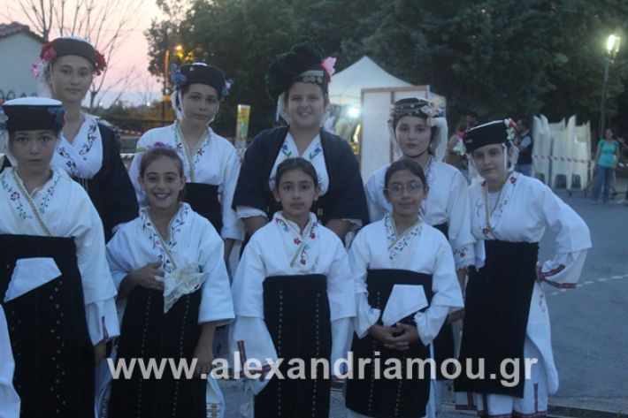 alexandriamou.gr_5komninapaidikofestval2019018