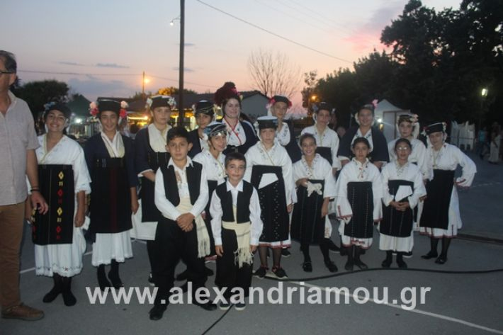 alexandriamou.gr_5komninapaidikofestval2019020