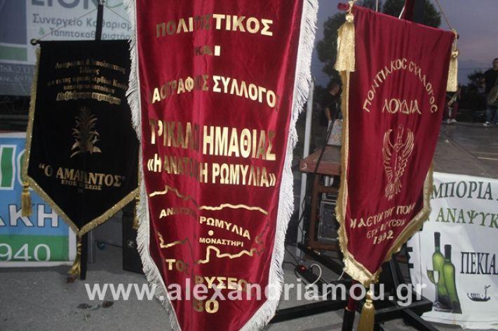 alexandriamou.gr_5komninapaidikofestval2019029