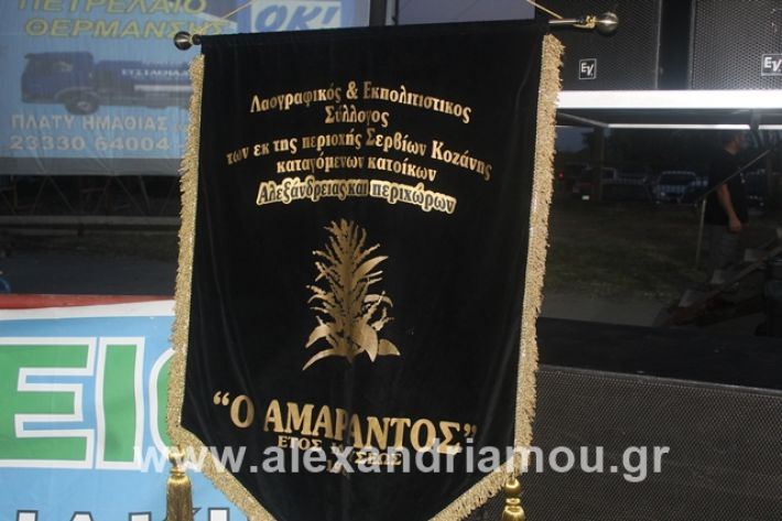 alexandriamou.gr_5komninapaidikofestval2019030