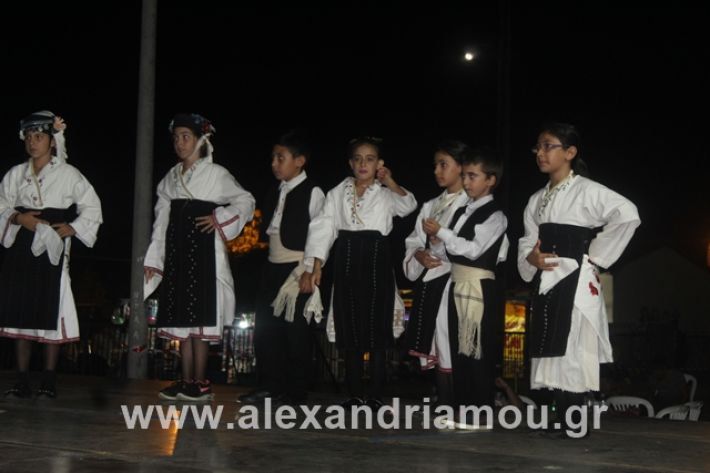 alexandriamou.gr_5komninapaidikofestval2019058