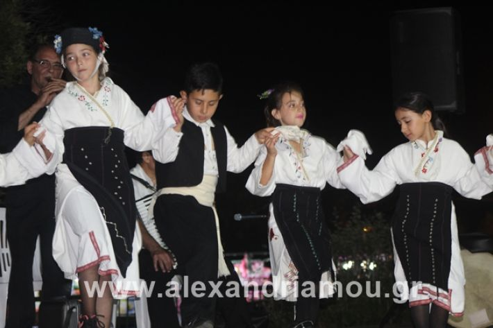 alexandriamou.gr_5komninapaidikofestval2019075