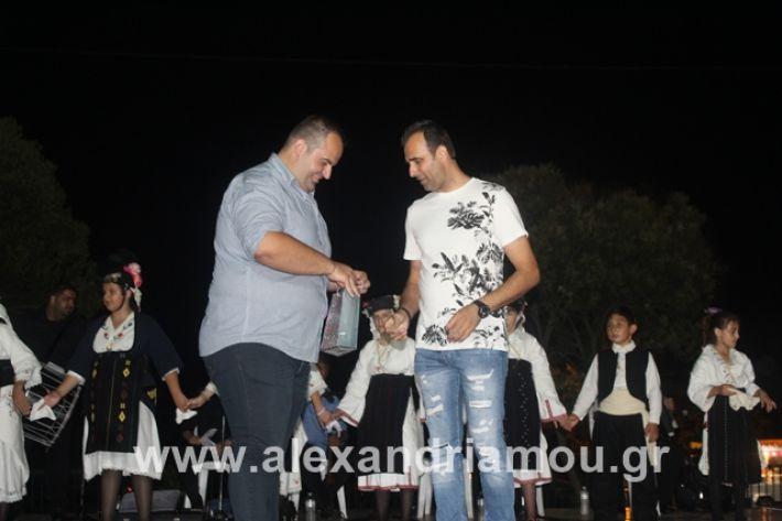 alexandriamou.gr_5komninapaidikofestval2019079