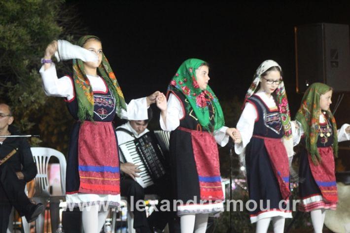 alexandriamou.gr_5komninapaidikofestval2019232