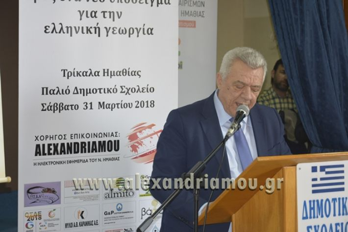 6himerida_georgias_trikala2018037