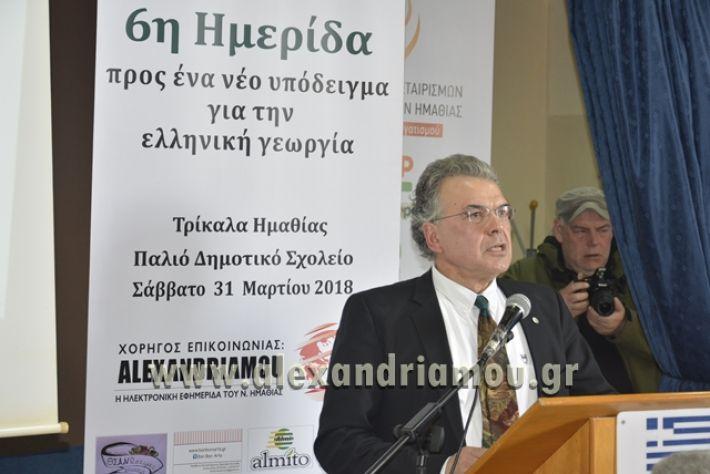 6himerida_georgias_trikala2018041