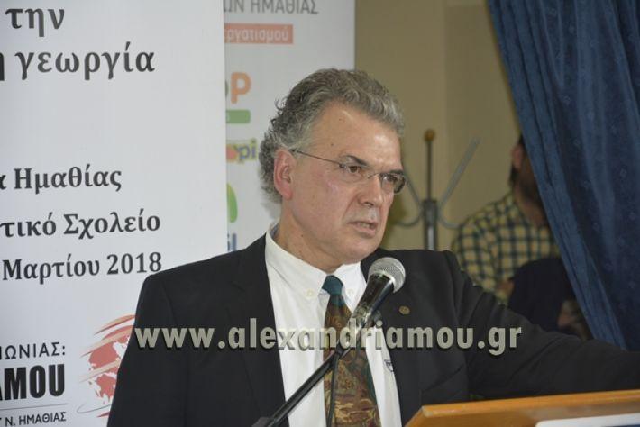 6himerida_georgias_trikala2018042